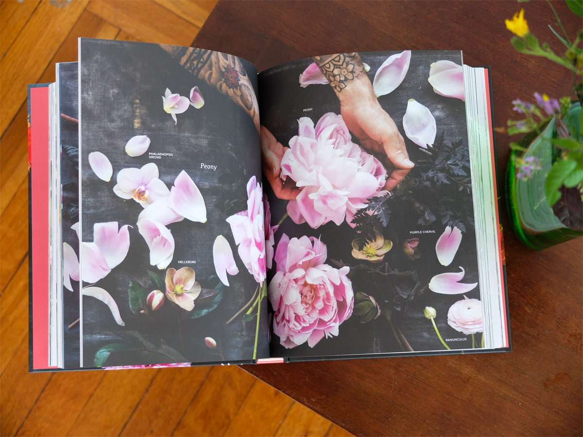 Beautiful pink peonies grace the pages of a spread in Ariella Chezar's latest book, The  Flower Workshop,  photographed by Erin Funkel.