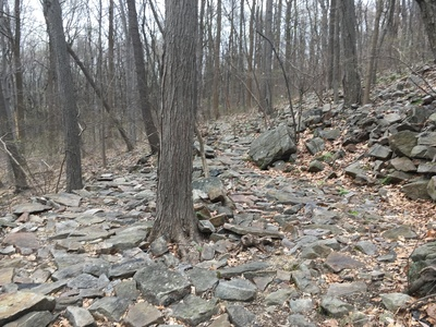 PA Hike and Brunch.jpg