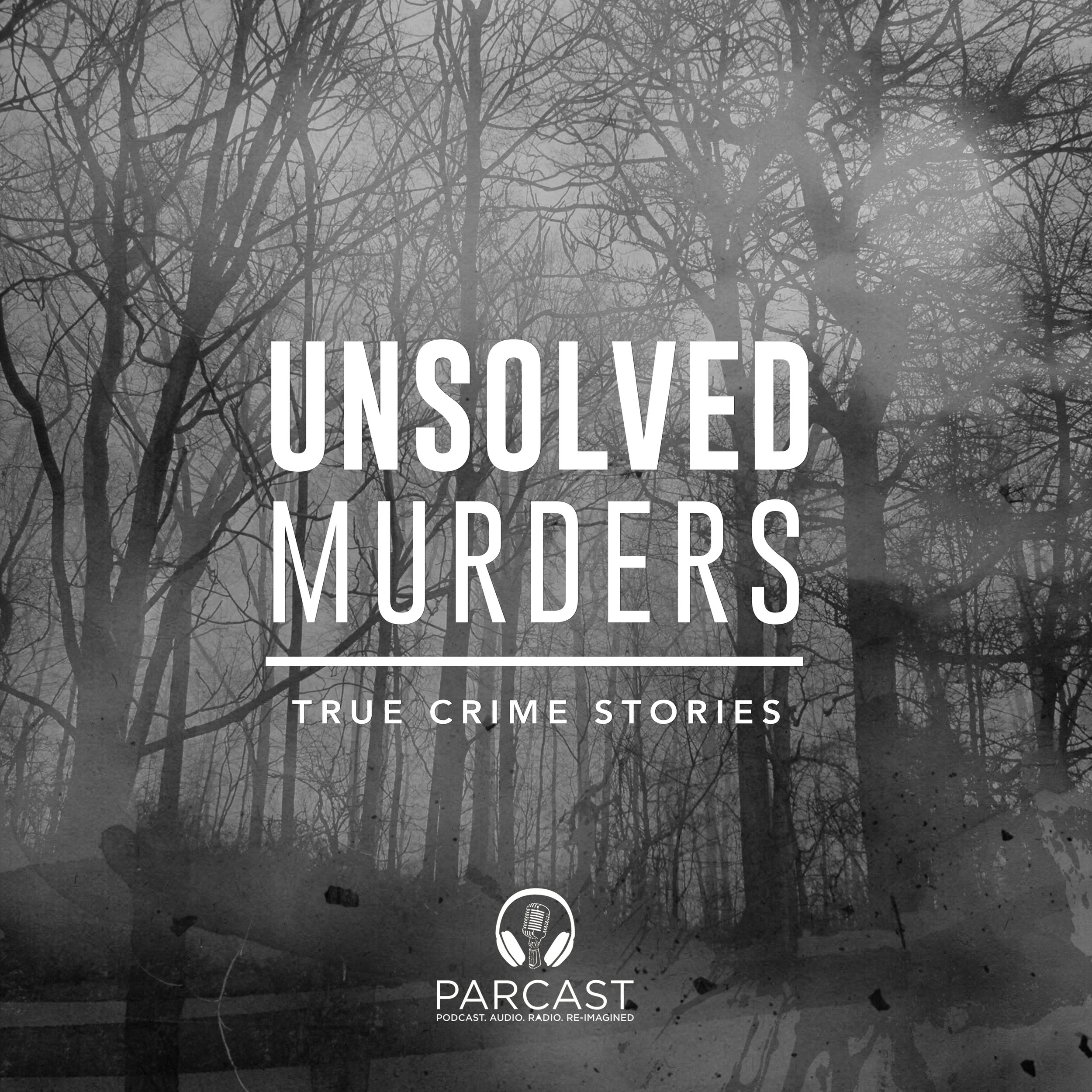 Unsolved Murders_artwork (1).jpg