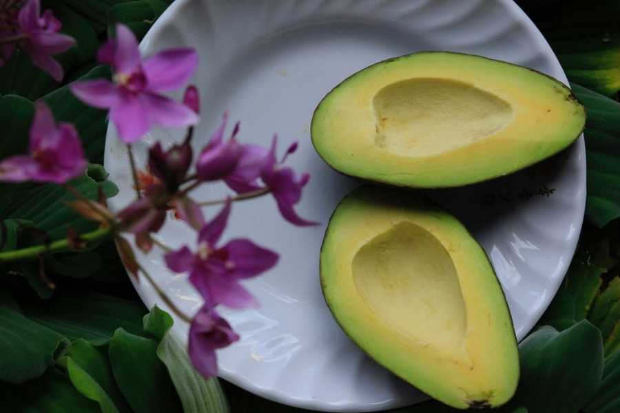 avocado, california, avocado festival, breakfast, lunch, fruit, guacamole