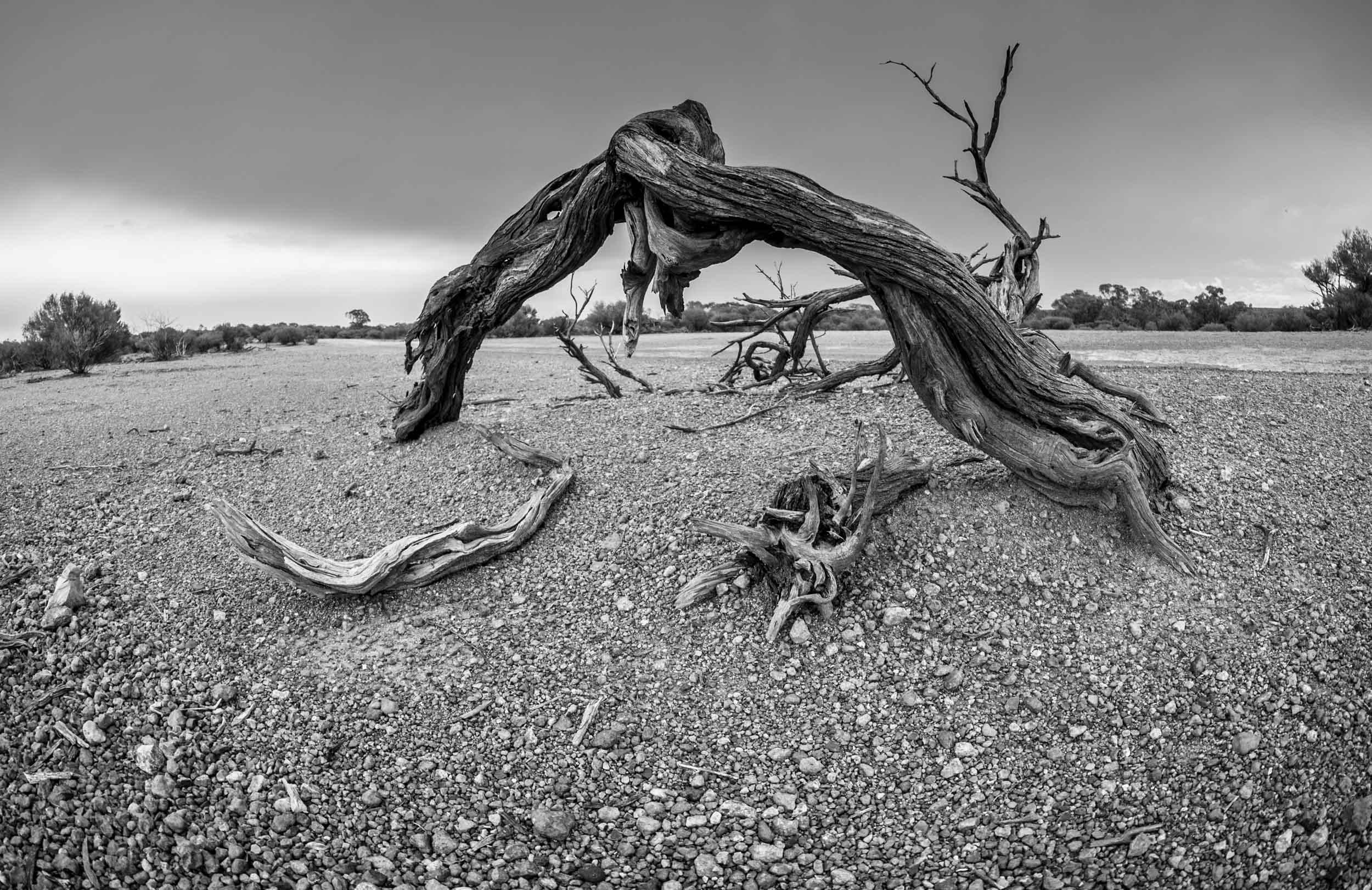 outback photography courses sydney-1.jpg