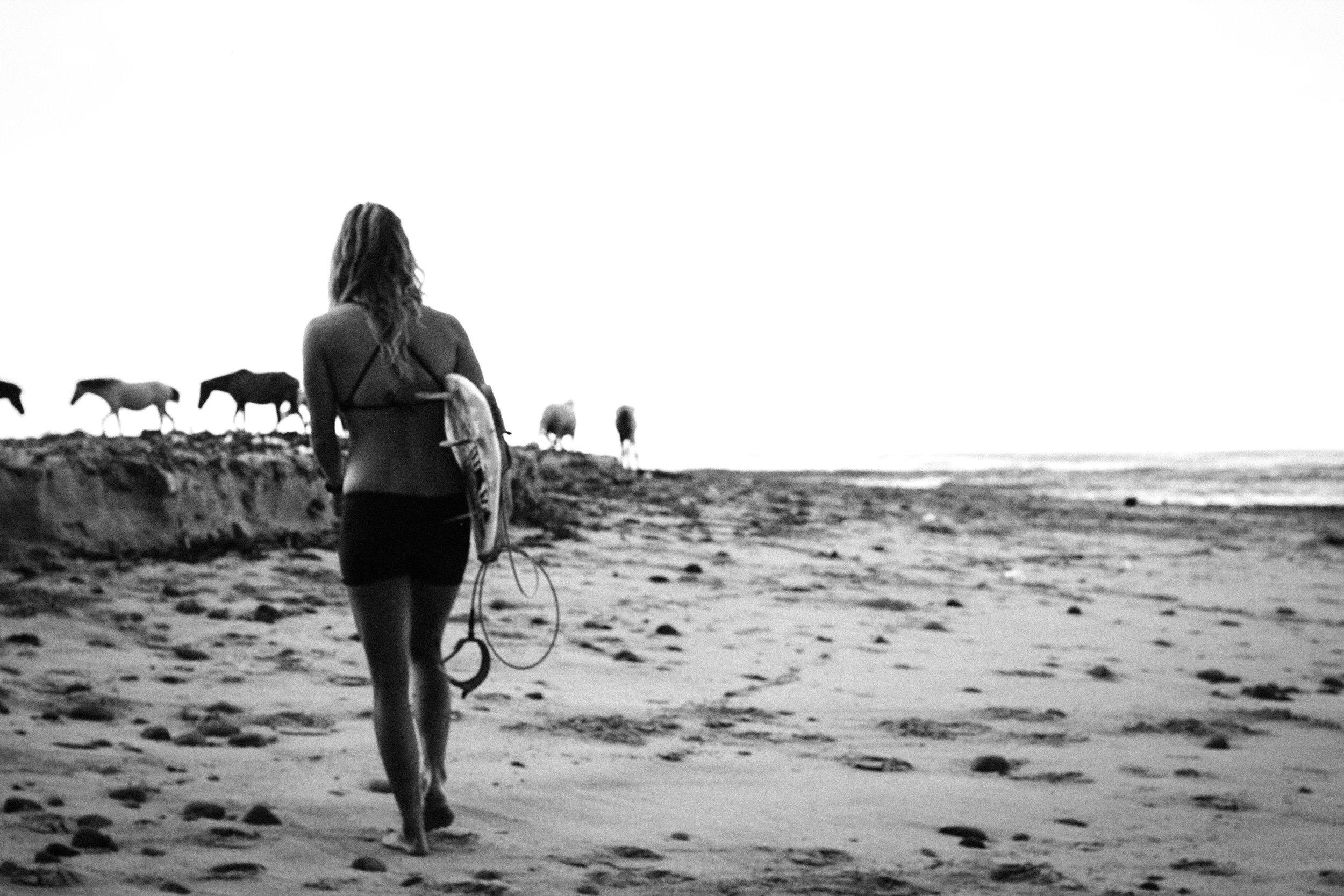horse beach (1 of 1).jpg