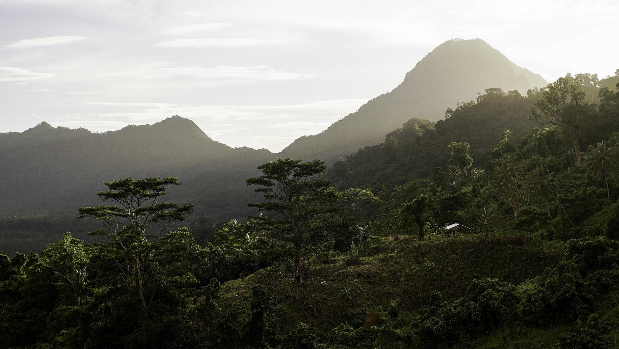 samoa landscape (1 of 1).jpg