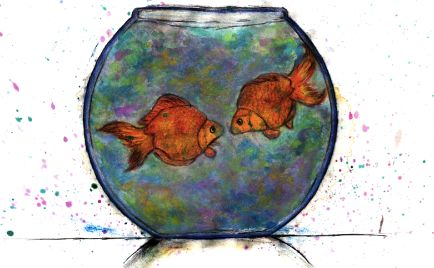 """""""We're just two lost souls swimming in a fishbowl year after year."""" Pink Floyd"""