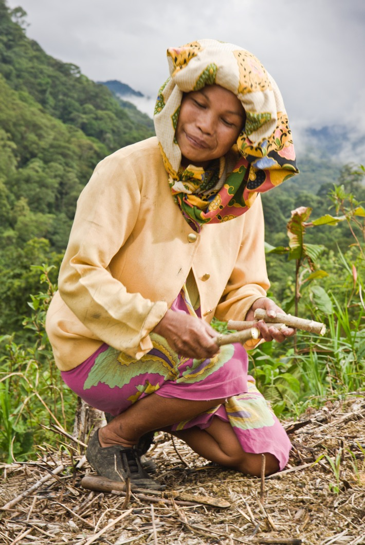 An indigenous Dasun mother who Noah stayed with (and photographed) in Crocker Range National Park, in Borneo, plants tapioca root in a forest farm.