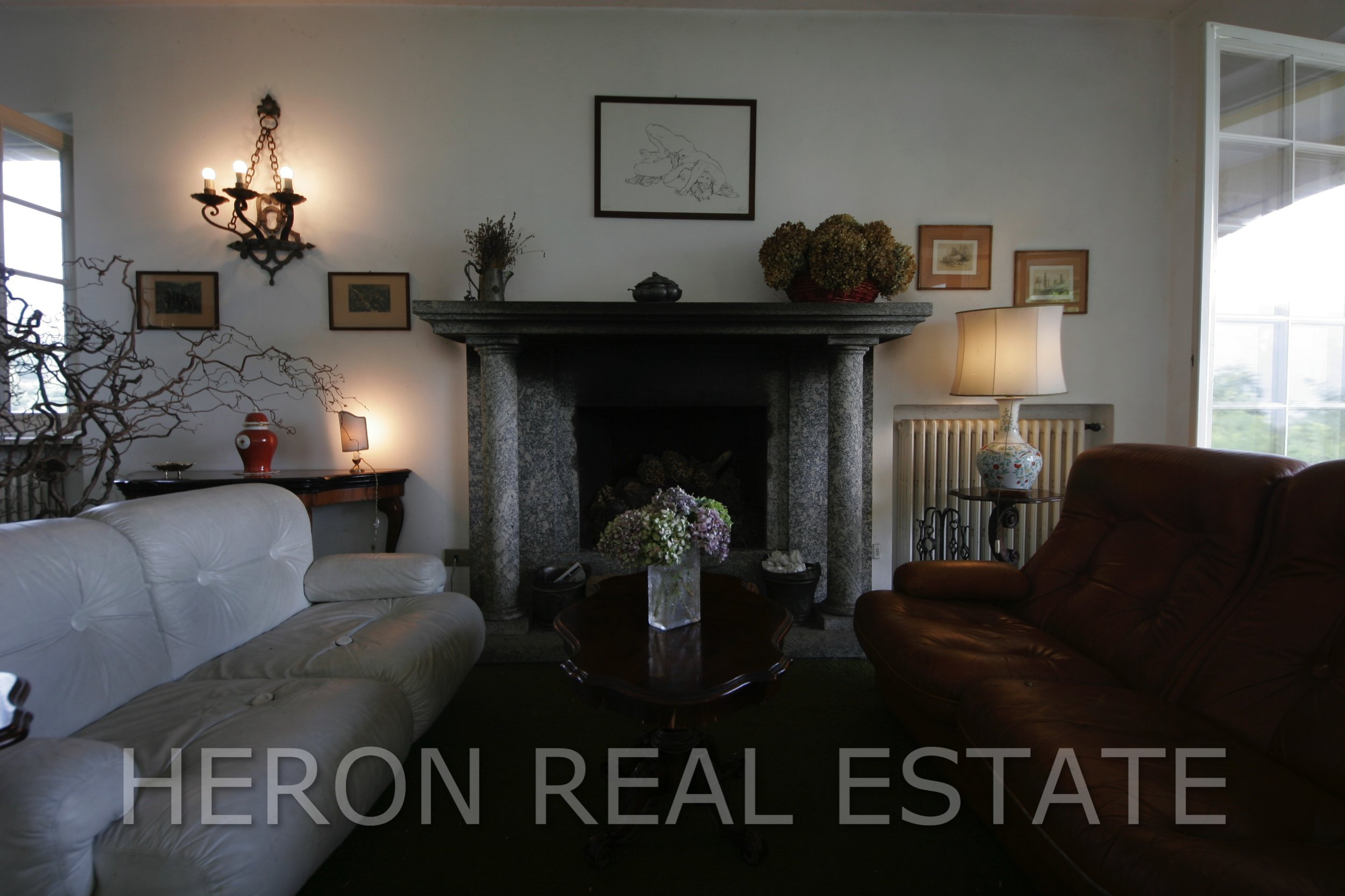 4 living room with fireplace.jpg
