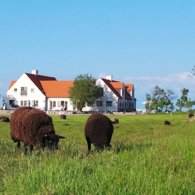 Our sister hotel Vejroe Resort in the archipelago