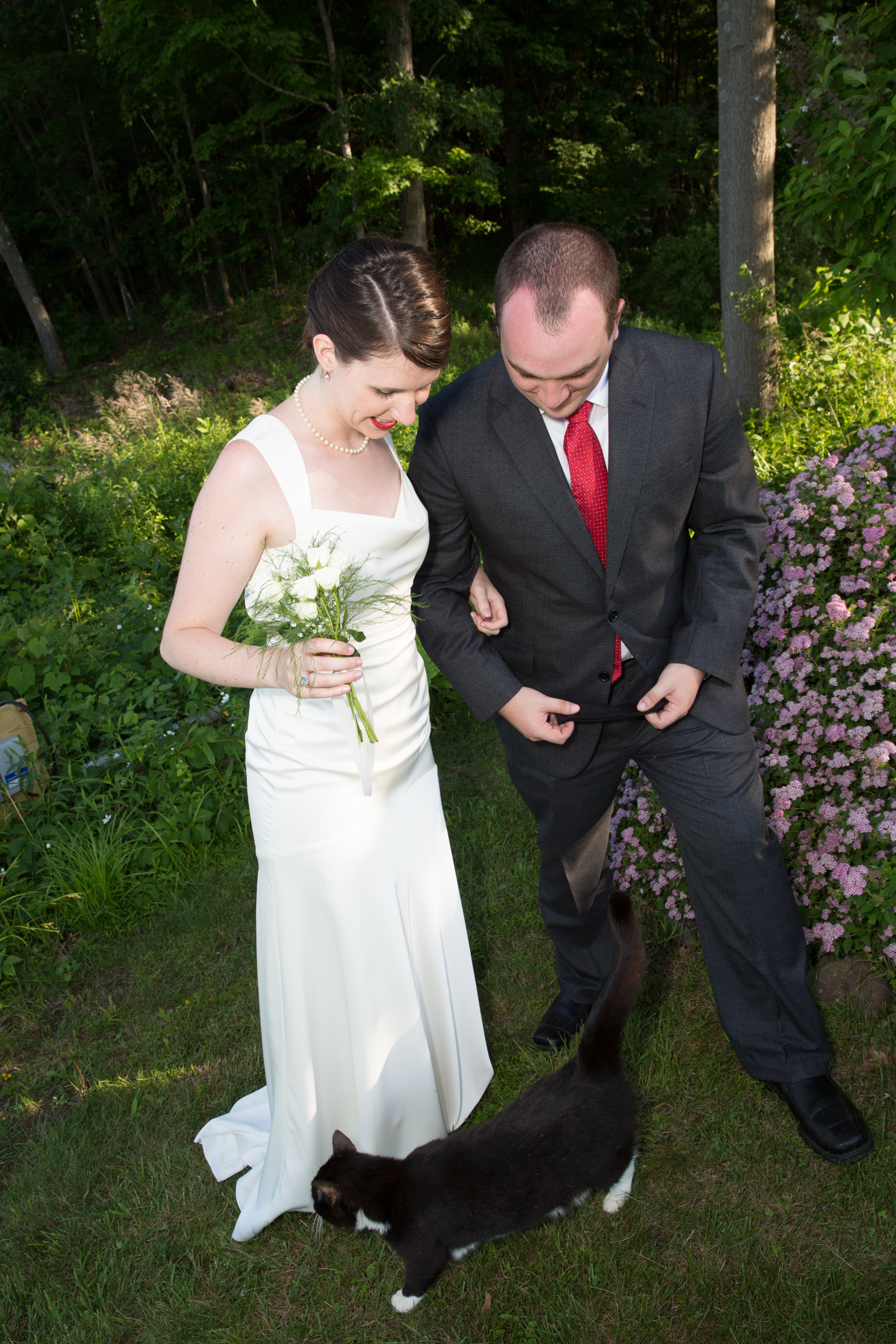 Wedding in Saugerties with the bride, groom and cat.
