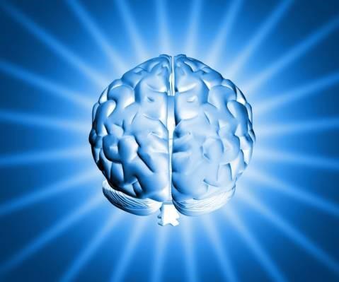 busy-brain.jpg