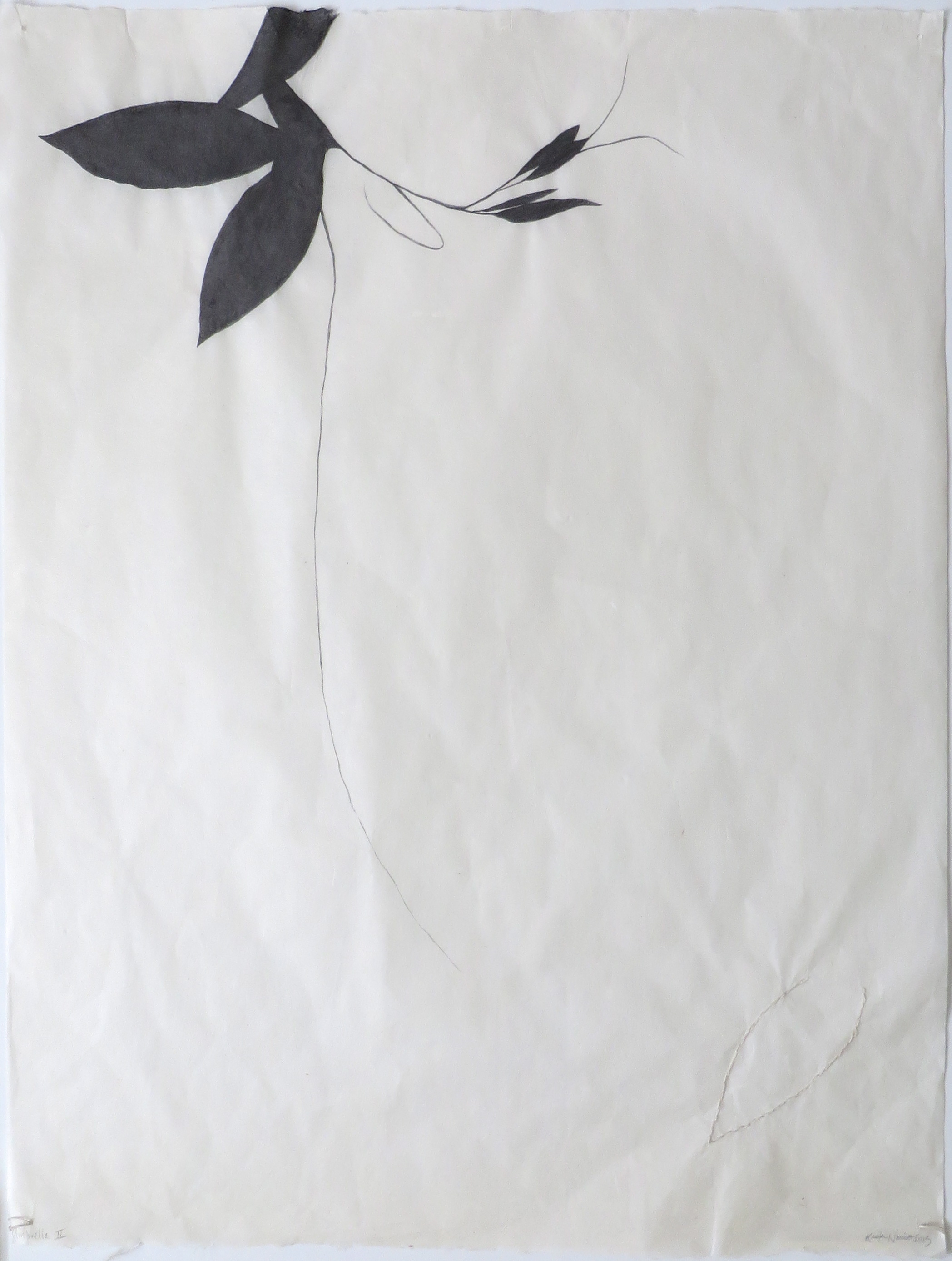 Umbrella II  Graphite and embroidery on Sekishu, 25 x 19 inches, 2015.