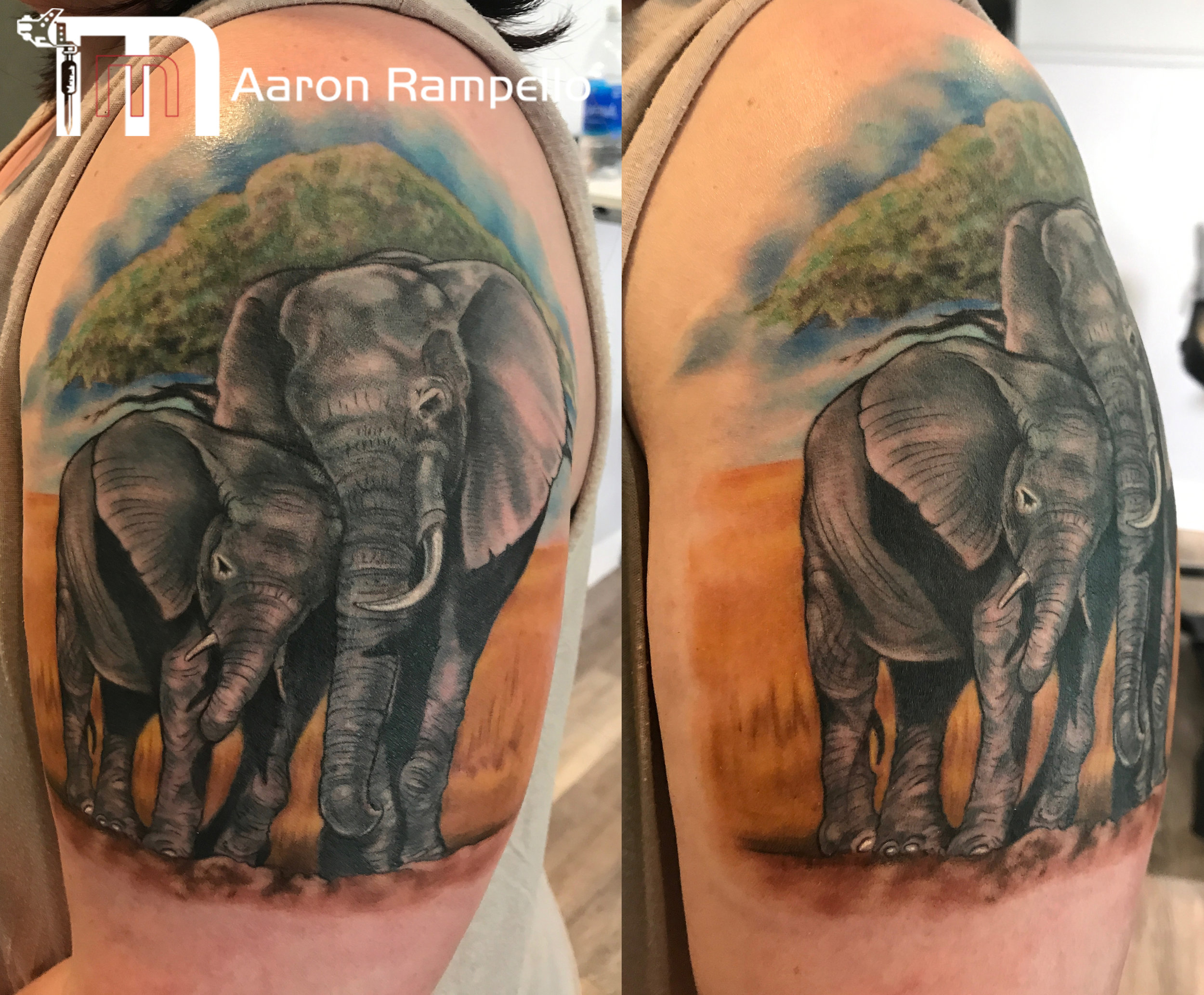 Mama and baby elephant masters method tattoo copy.jpg