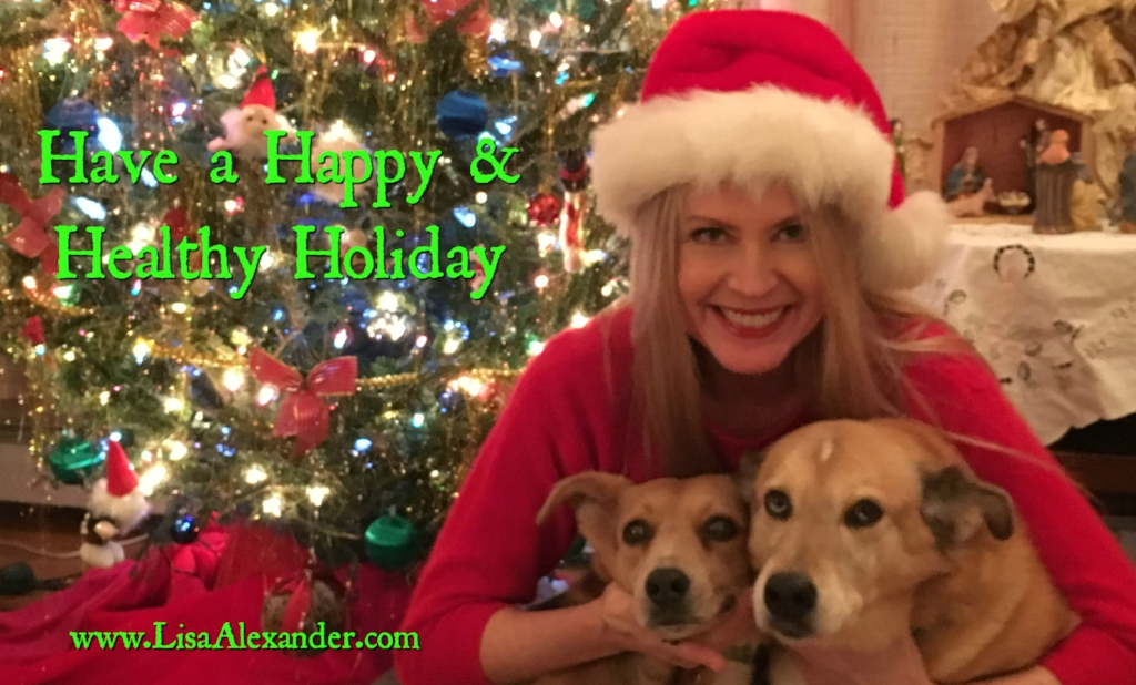 Happy Holidays from Lisa, Bambi and Toby.
