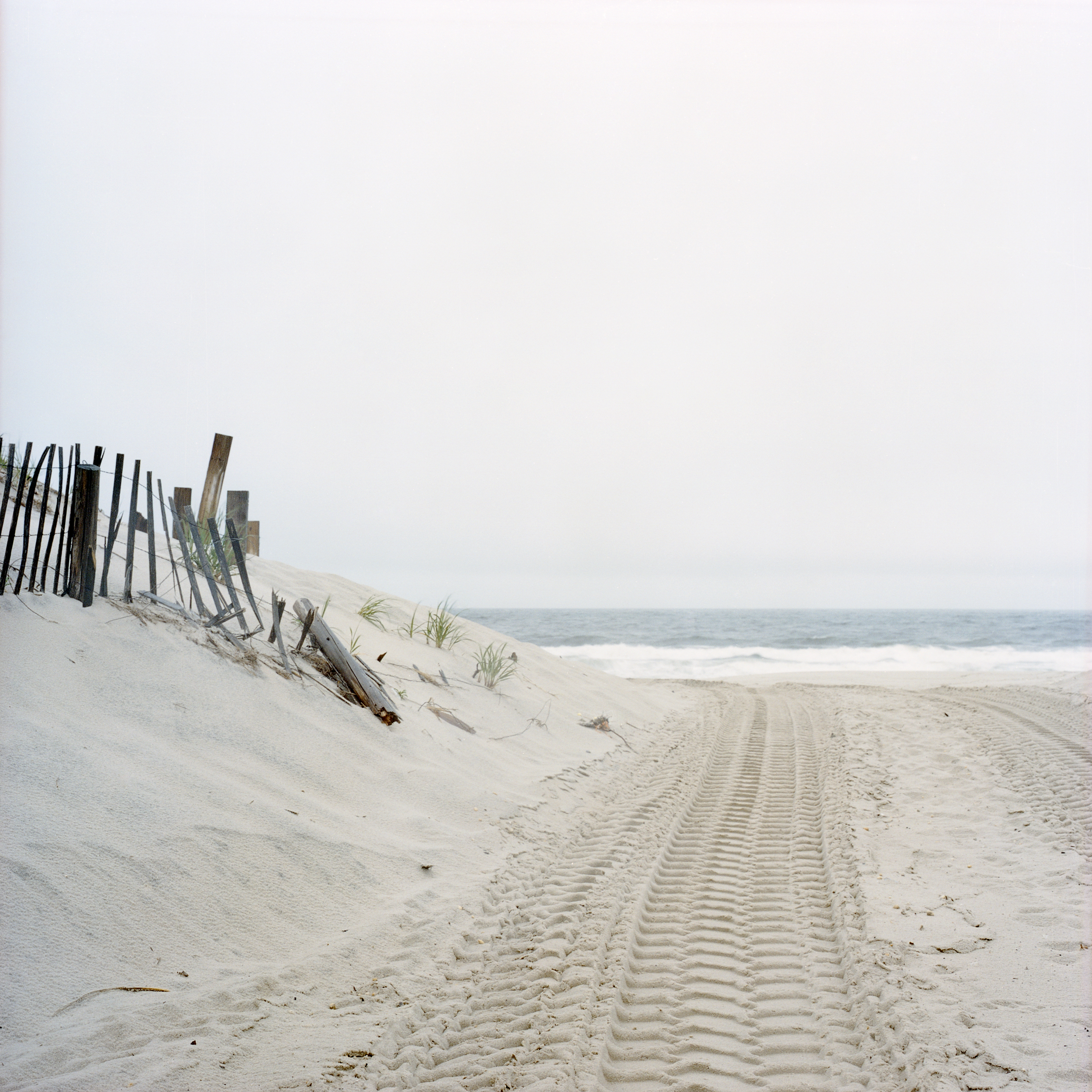 Ocean and Dune