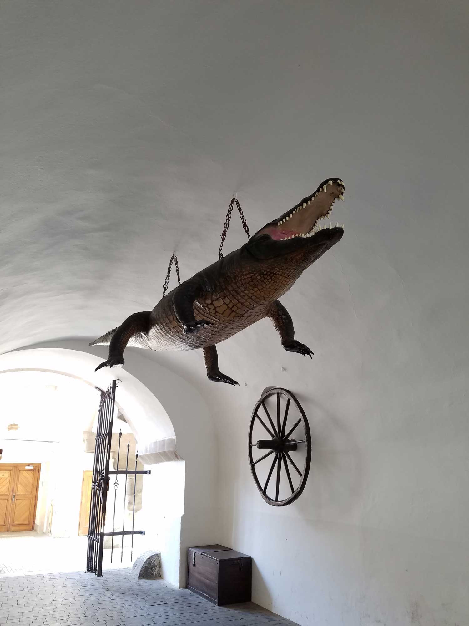 For some reason there is a 400-year old replica of a crocodile (using real crocodile skin brought by the Turks during negotiations with the Hapsburgs in the 1600s) hanging from the ceiling underneath Brno's city hall.