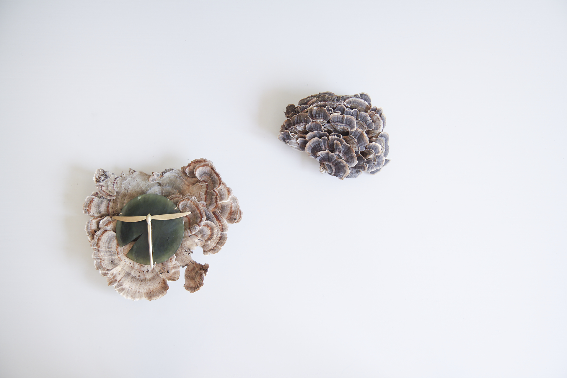 Jade Lilypad Brooch with 18ky Gold Dragonfly