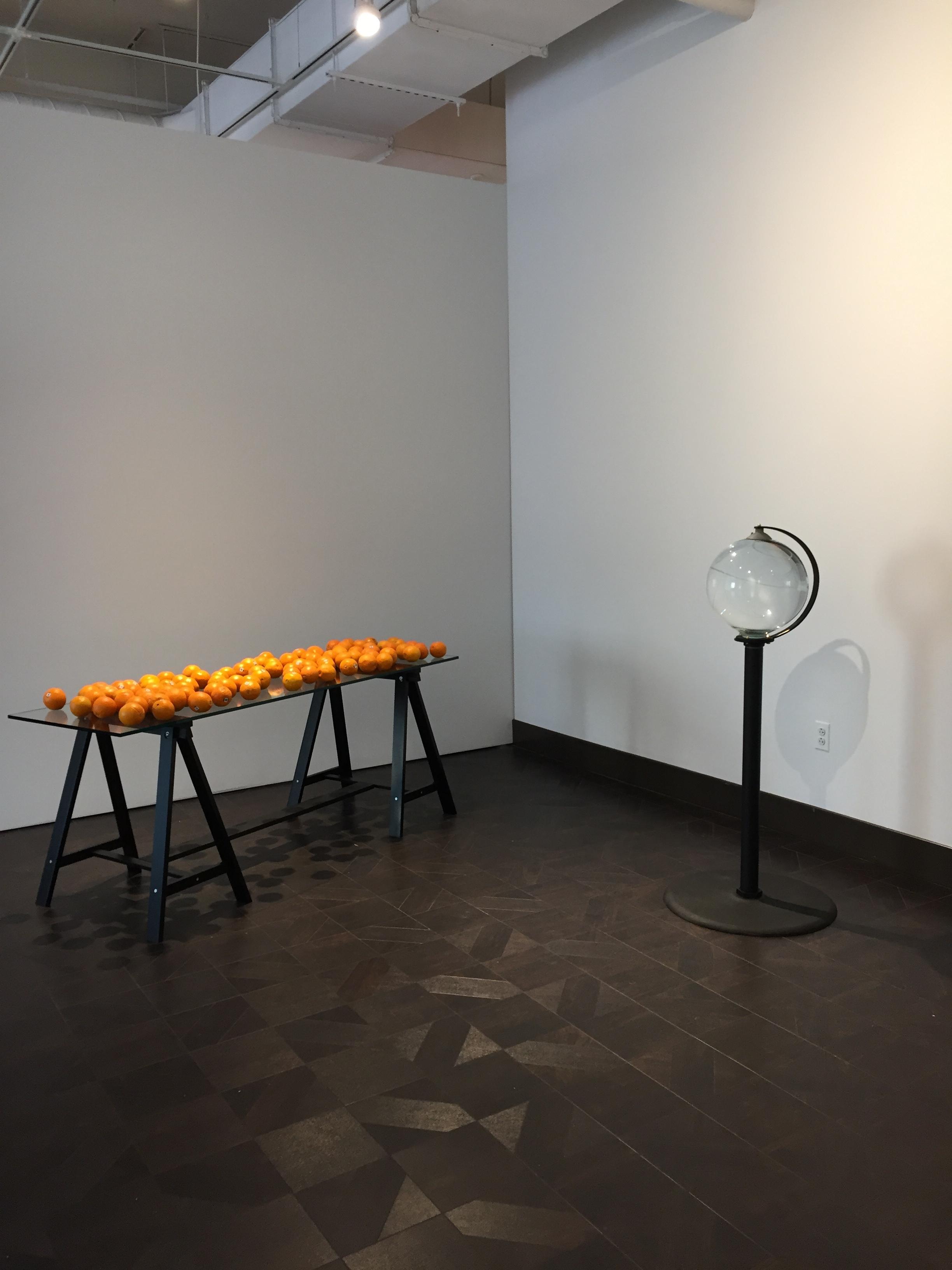 Suzanne (Installation View)