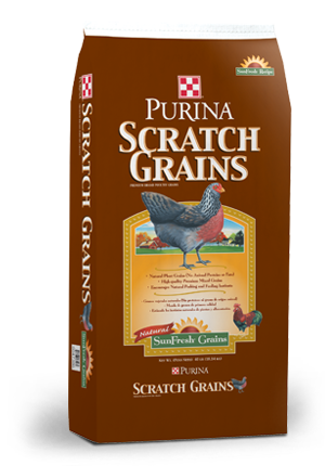 Scratch Grains