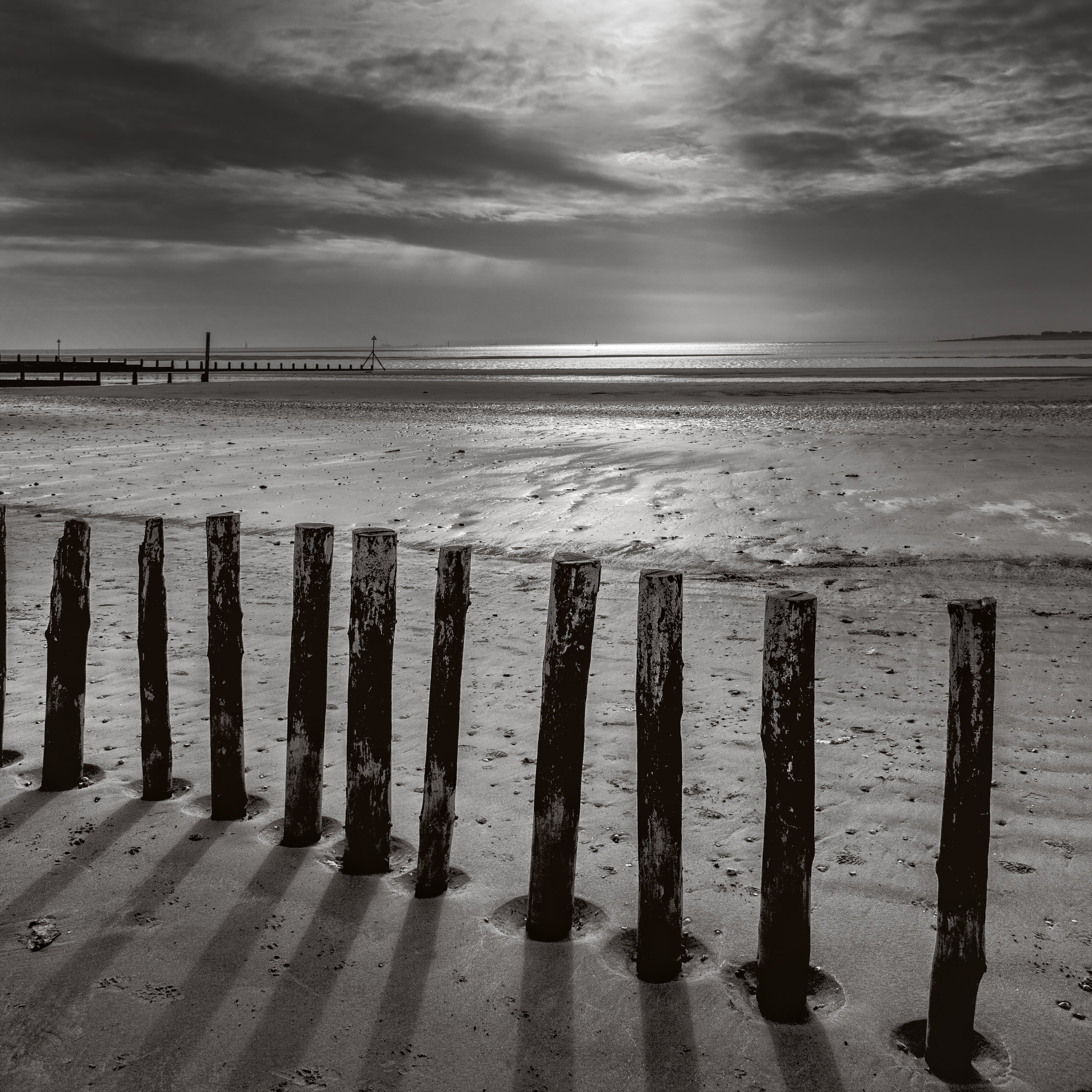 Old groynes Chichester harbour