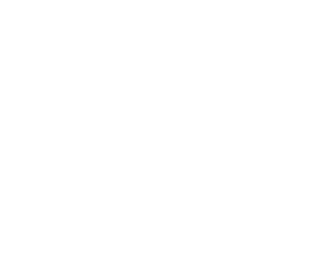 VIP Experience_Page Header_SM.png