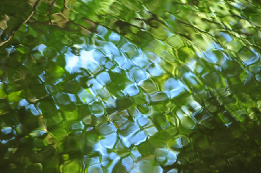 Teaneck Creek Conservancy water reflection ripples.jpg