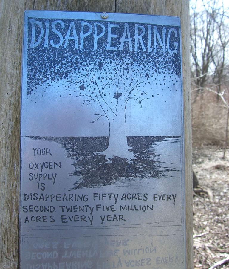 Walking Trees Talking Trees - Richard Kirk Mills  2006 31 zinc etching plates