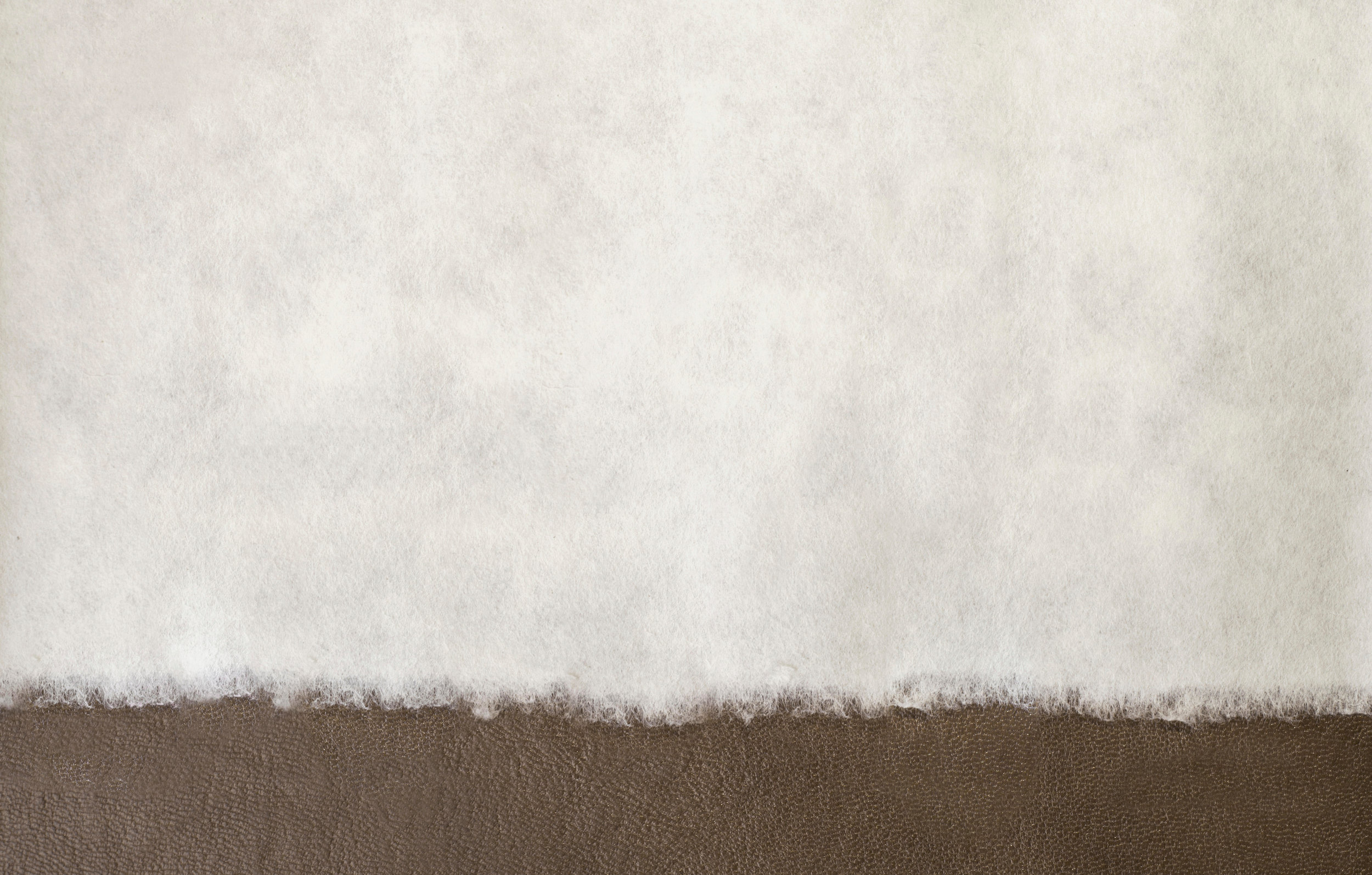 Canva - Paper Background (1).jpg