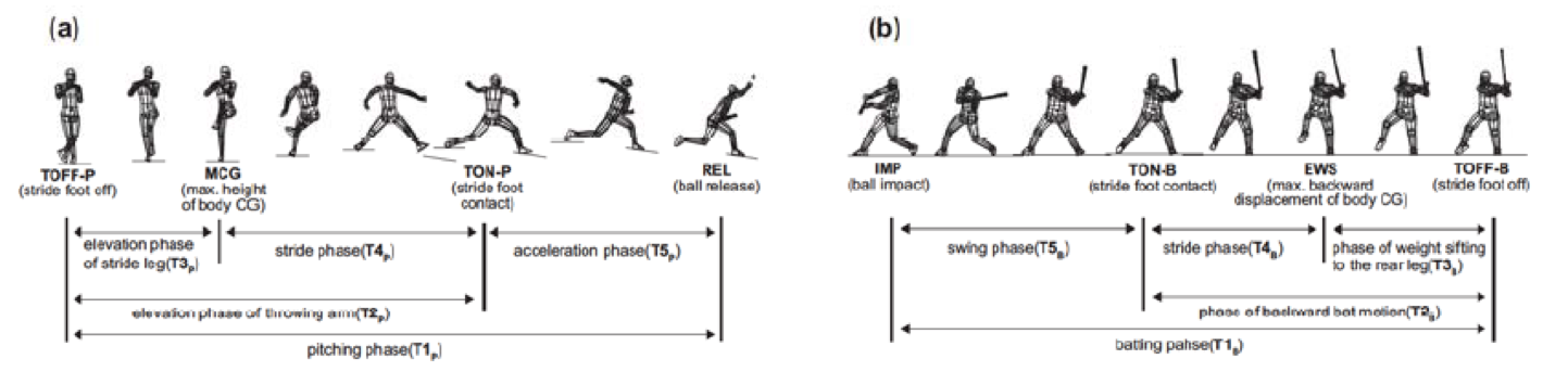 Flgure I: Definitions of each phase for (a) the pitchlng and (b) the batting motions.