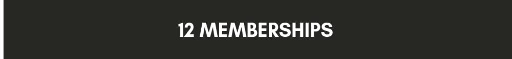 GET+ACCESS+12 memberships.png