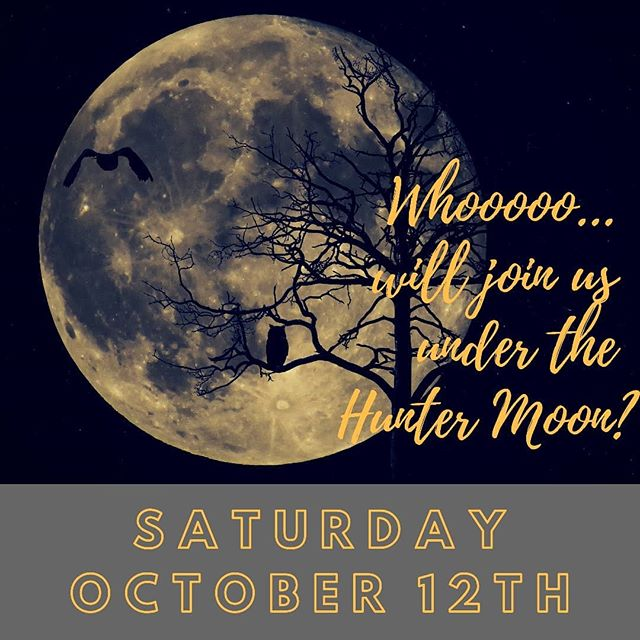 The weather may be cool, but the entertainment will be HOT! Bring your own kayaks or paddle board or just hang out at the marina. Either way, you'll be rocking out to the music of @dr.websteroboogie as John Lennon.  If you need to rent a board, sign up online.  #fullhuntermoon #fullmoonfloat #huntermoon #fullmoon #glowpaddle #standuppaddle #paddleboarding #sup #suplife #lakelife #supallnight #supmo #lakeallnight #paddleunderthestars #paddledownyonder
