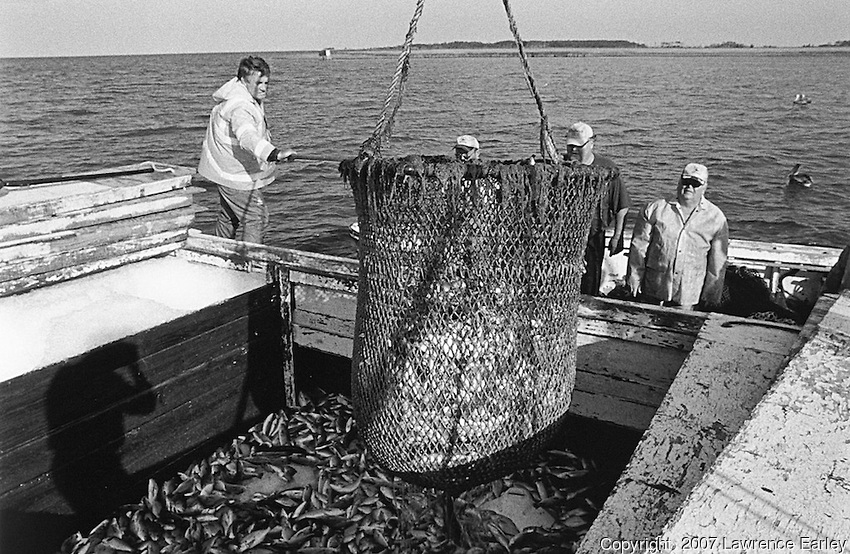 Bailing the FisH Credit: Lawrence S. Earley