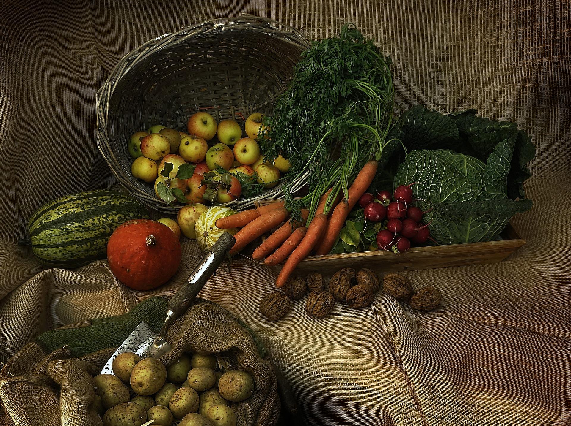 harvest-3679075_1920.jpg