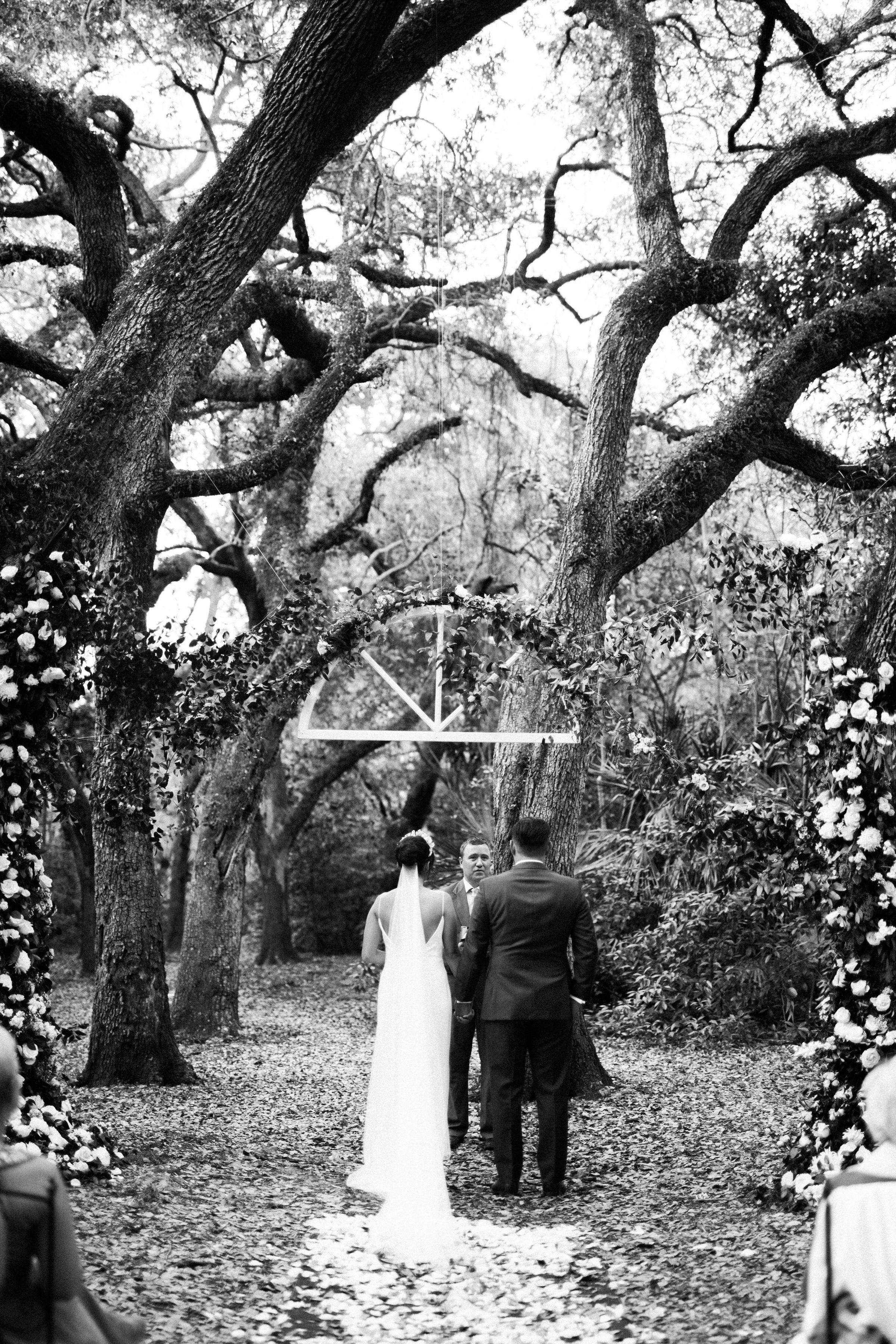 34-greynolds-park-wedding-trees.jpg