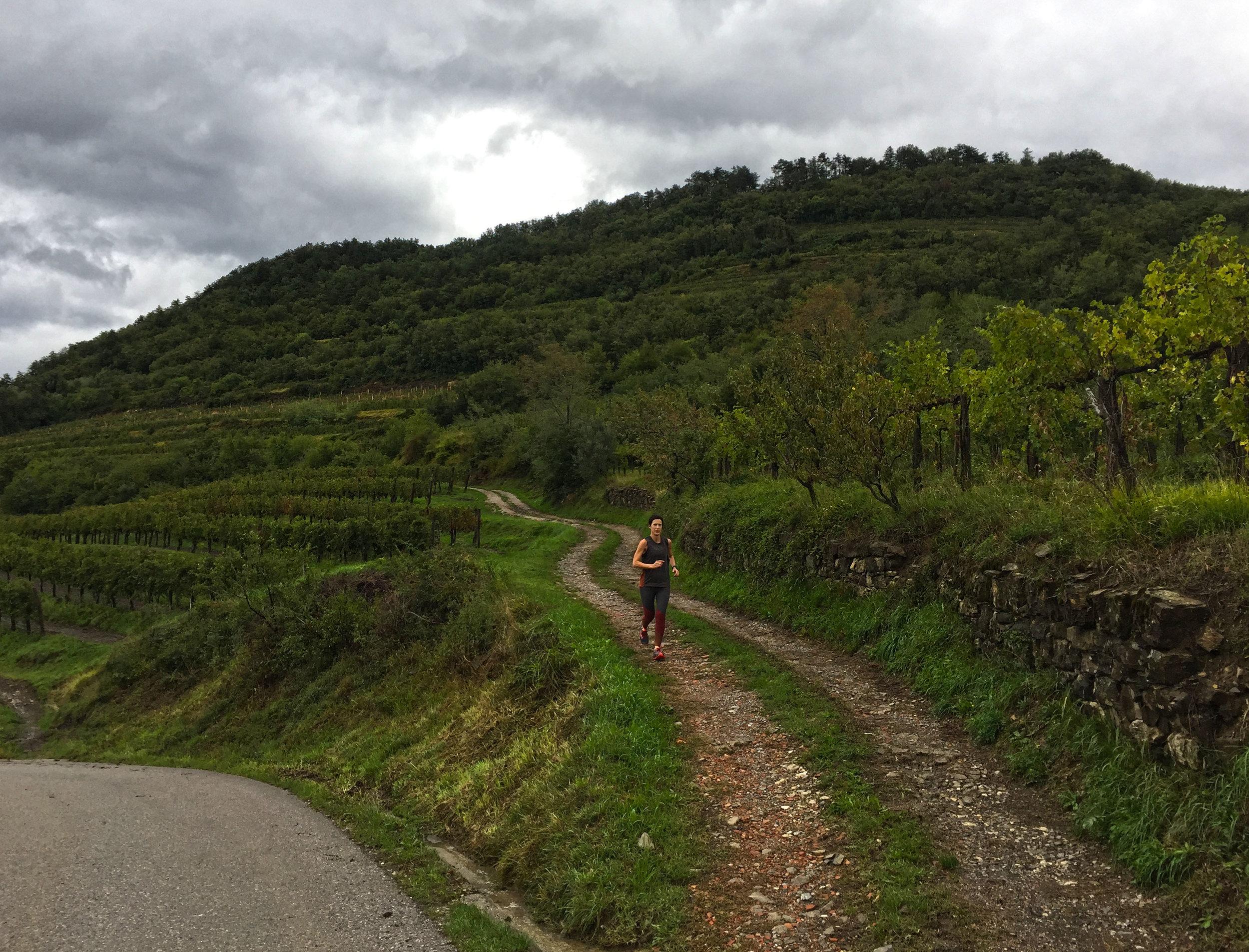 Jean vineyard run.jpg