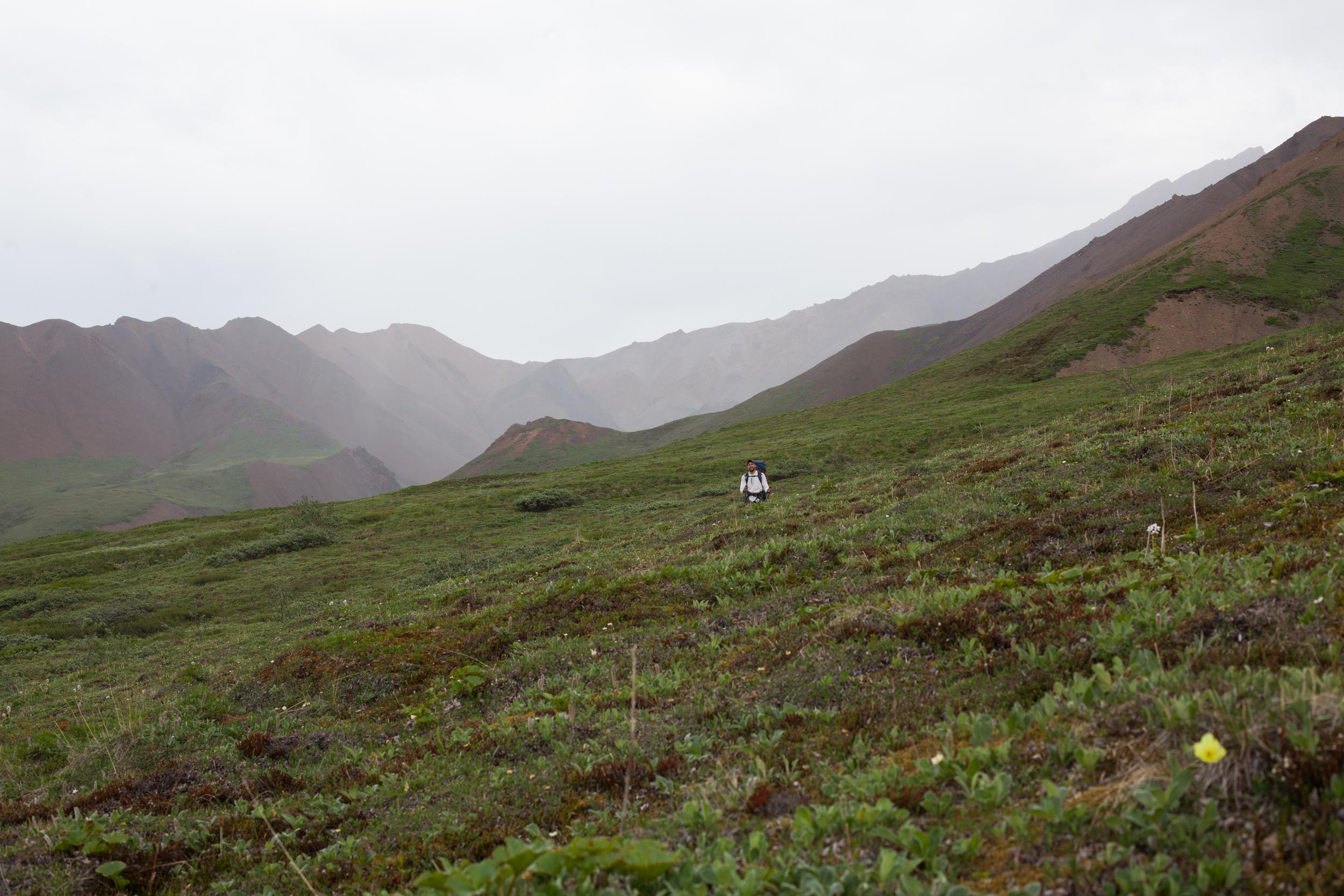 talia_galvin_Alaska (30 of 121).jpg
