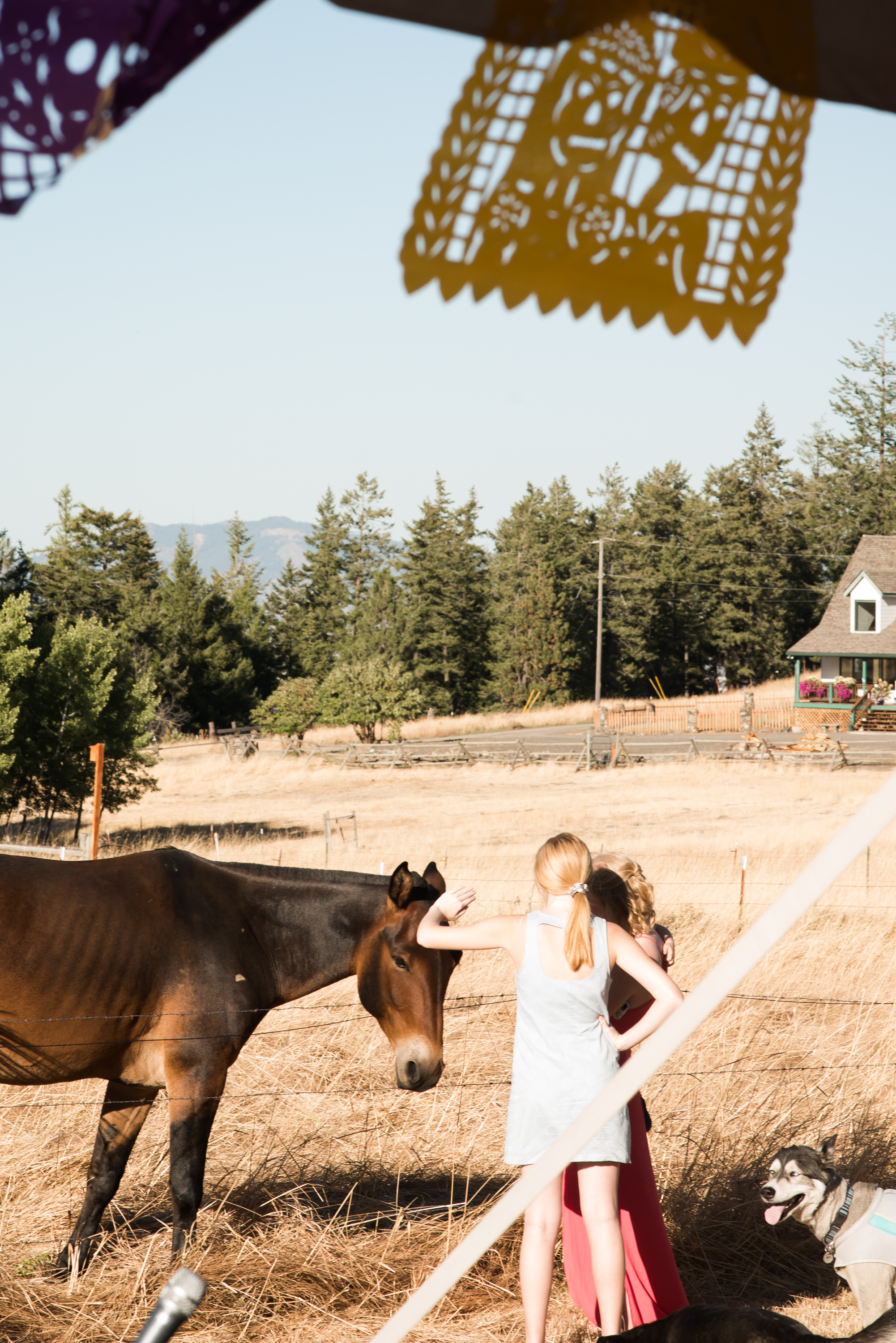 Lana Micah Wedding La Grande Oregon September 2018 Please Credit Talia Jean Galvin (374 of 687).jpg
