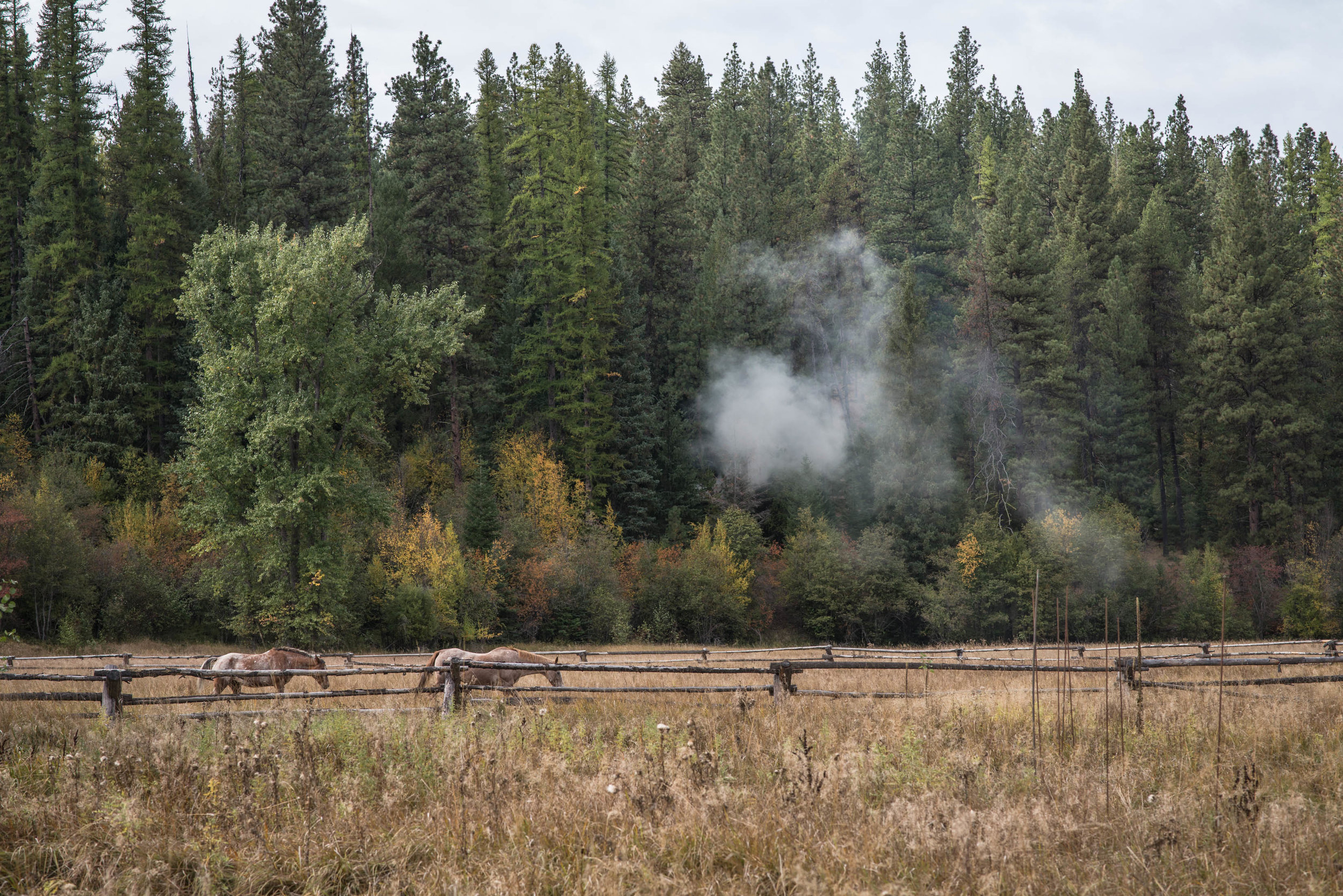 Minam_River_Lodge_Wallowa_Mountains_Eagle_Cap_Wilderness_Oregon_Autumn_2017_Please_Credit_Talia_Jean_Galvin-156.jpg