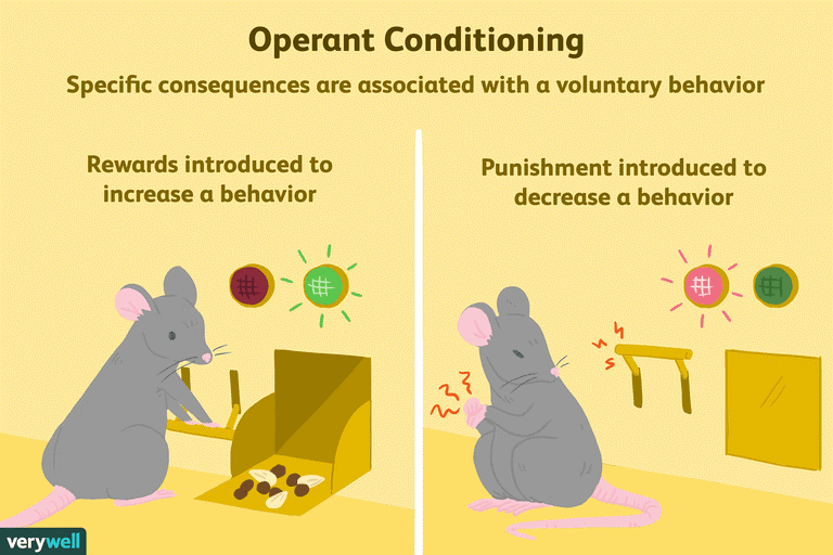 Operant Conditioning.png