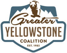 greater yellowstone coalition.png