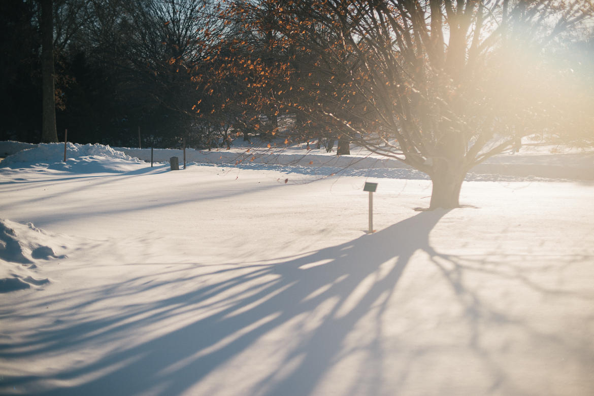 the-planting-fields-oyster-bay-ny-winter-snow-travel-long-island-photographer-0008