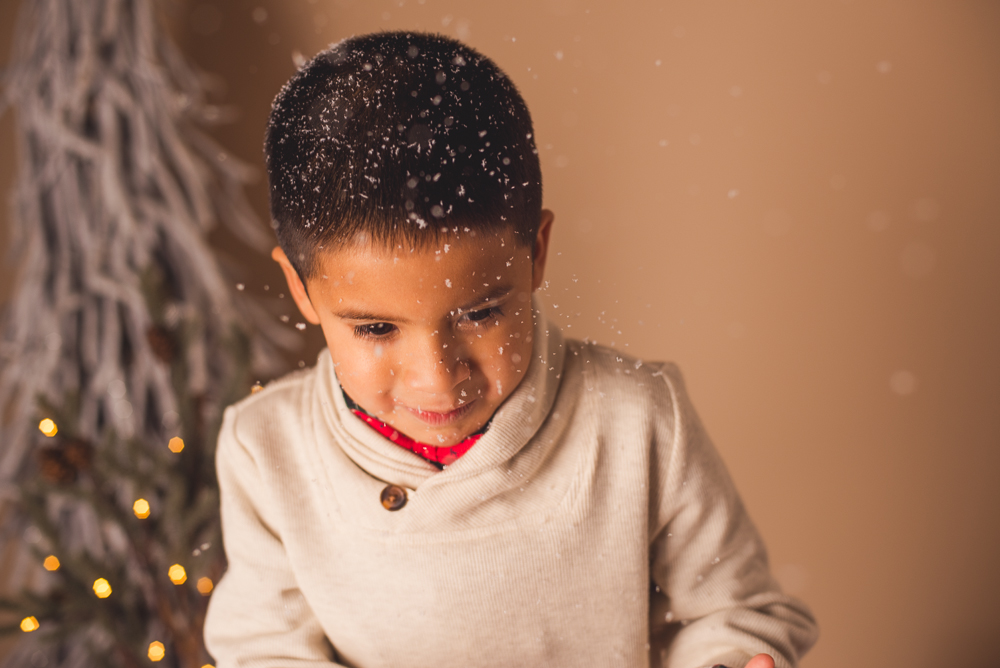 josh_mathew_holiday_mini_sessions_long_island_photography-0007.jpg