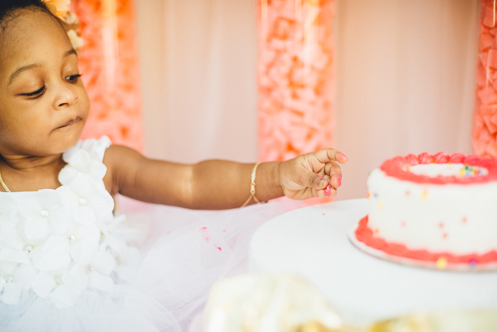 aela_first_birthday_family_shoot_long_island_NY_Photographer-0012.jpg