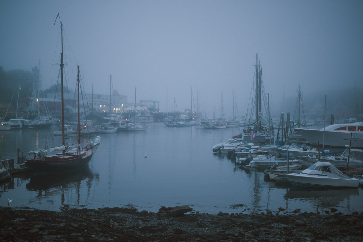 I love fog, it makes everything look better.