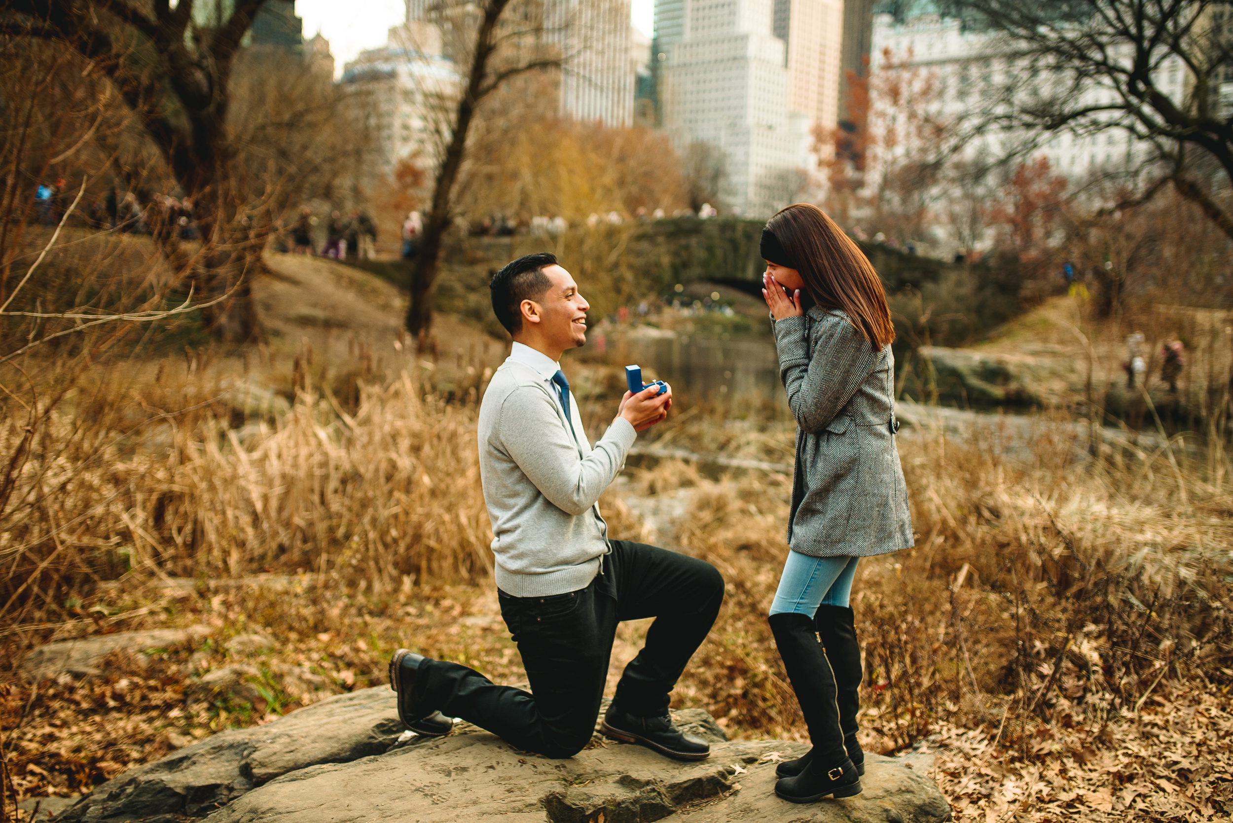 Propsoal-Central-Park-photographer-engagement-photography.jpg