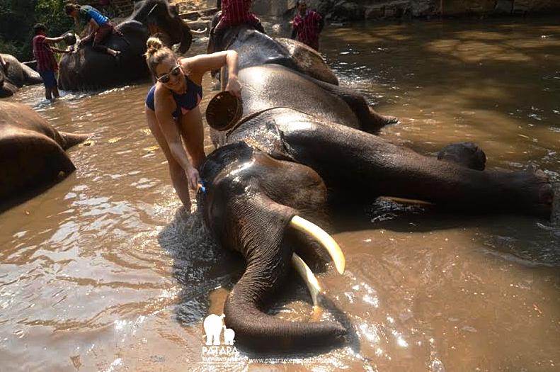 Giving Prai a bath