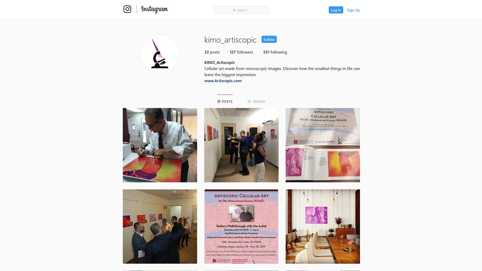 Social Media: Instagram Account Set-Up + Branding