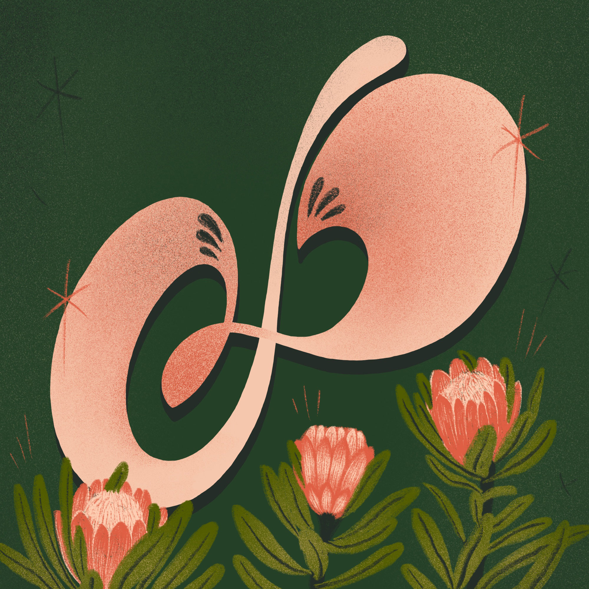 P is for Protea