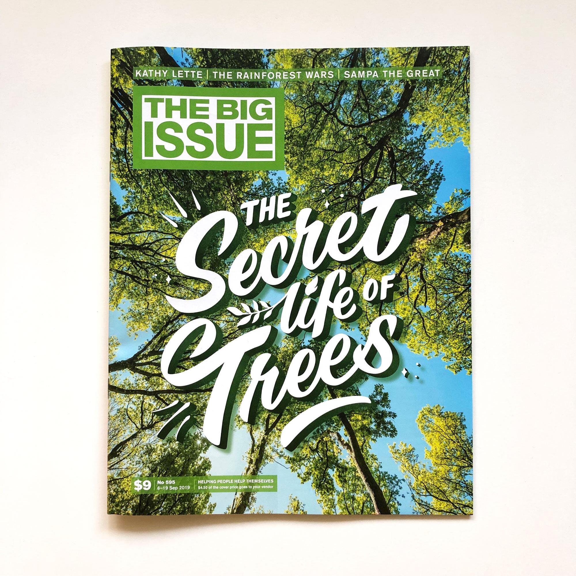 SecretTrees-Casey-TBI.jpg