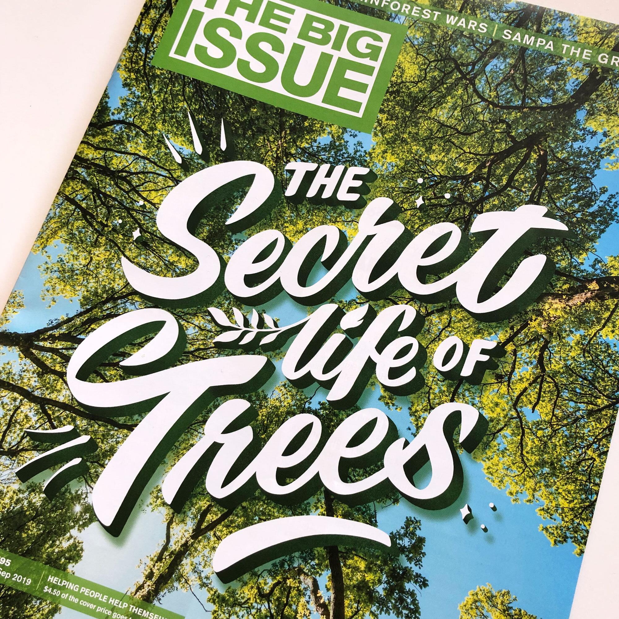 SecretTrees-Casey-TBI2.jpg