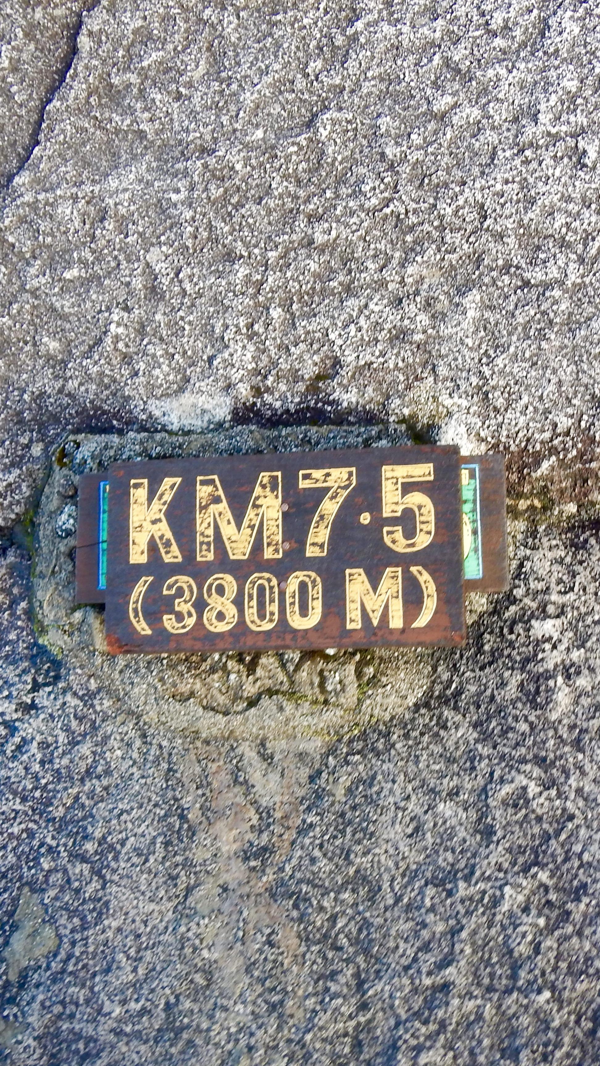 5213037E-B112-4289-9F8A-AEA939810112.jpg