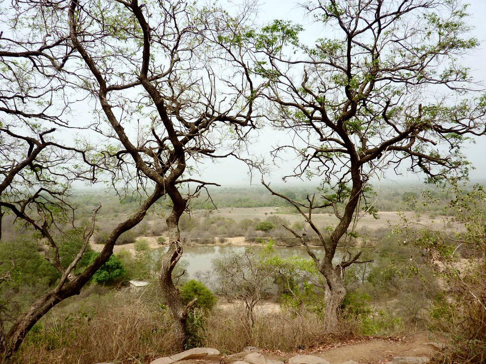 View from Mole Motel, Mole National Park, Ghana, Africa